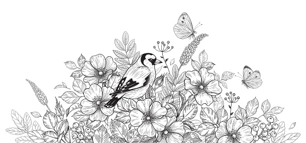 Hand drawn goldfinch sitting among wildflowers and flying butterflies. Black and white illustration with bird, flowers and insects. Vector monochrome elegant floral arrangement in vintage style.