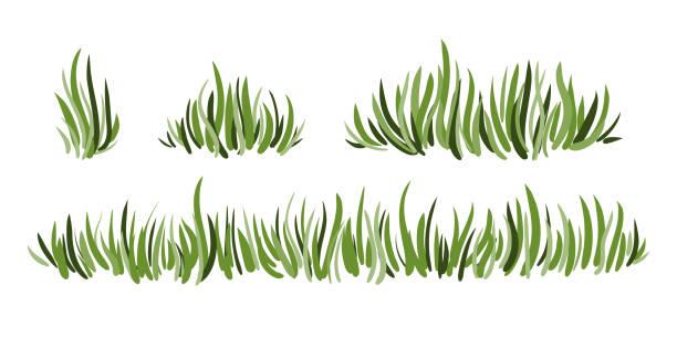 stockillustraties, clipart, cartoons en iconen met hand getekende groene gras set geïsoleerd op witte achtergrond. - grass