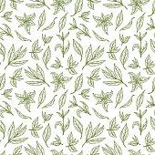 Hand drawn Green tea leaves Seamless pattern. Vector illustration
