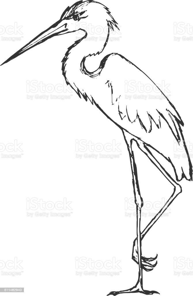 hand drawn, grunge, sketch illustration of heron vector art illustration