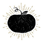 Hand drawn Halloween icon with a textured pumpkin vector illustration.