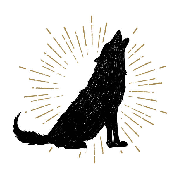 Hand drawn Halloween label with textured vector illustration. Hand drawn Halloween icon with a textured wolf vector illustration. silhouette of a howling coyote stock illustrations