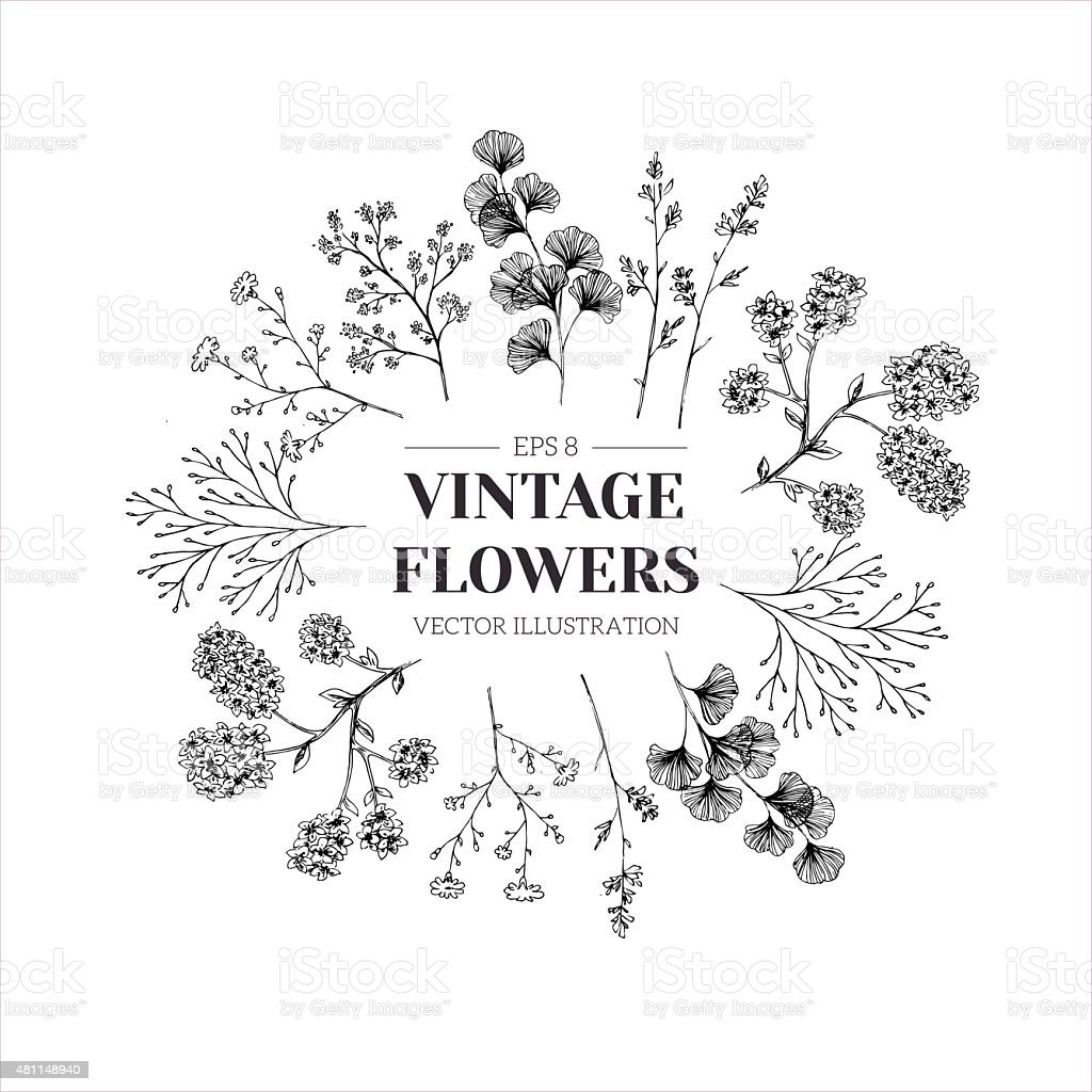 Hand drawn herb composition. Floral template. Vector illustration vector art illustration