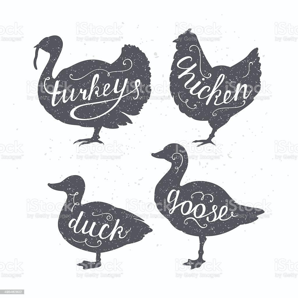 Hand drawn hipster farm birds silhouettes. Chicken, turkey, goose, duck vector art illustration