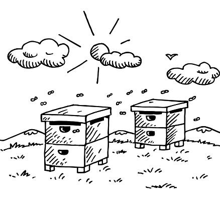 Hand drawn honey bees hive