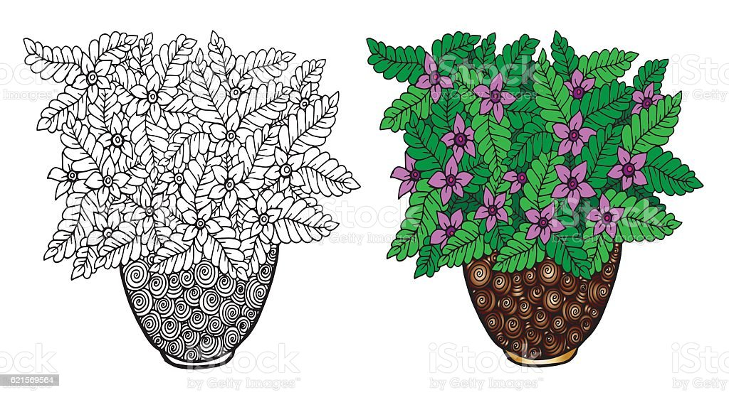 Hand drawn house plants in the pots - Illustration hand drawn house plants in the pots illustration – cliparts vectoriels et plus d'images de cache-pot libre de droits