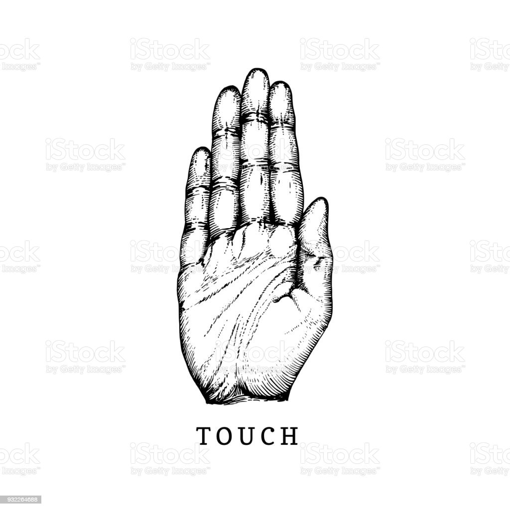 Hand Drawn Icon Of Touch Sense In Engraved Style Vector Illustration ...