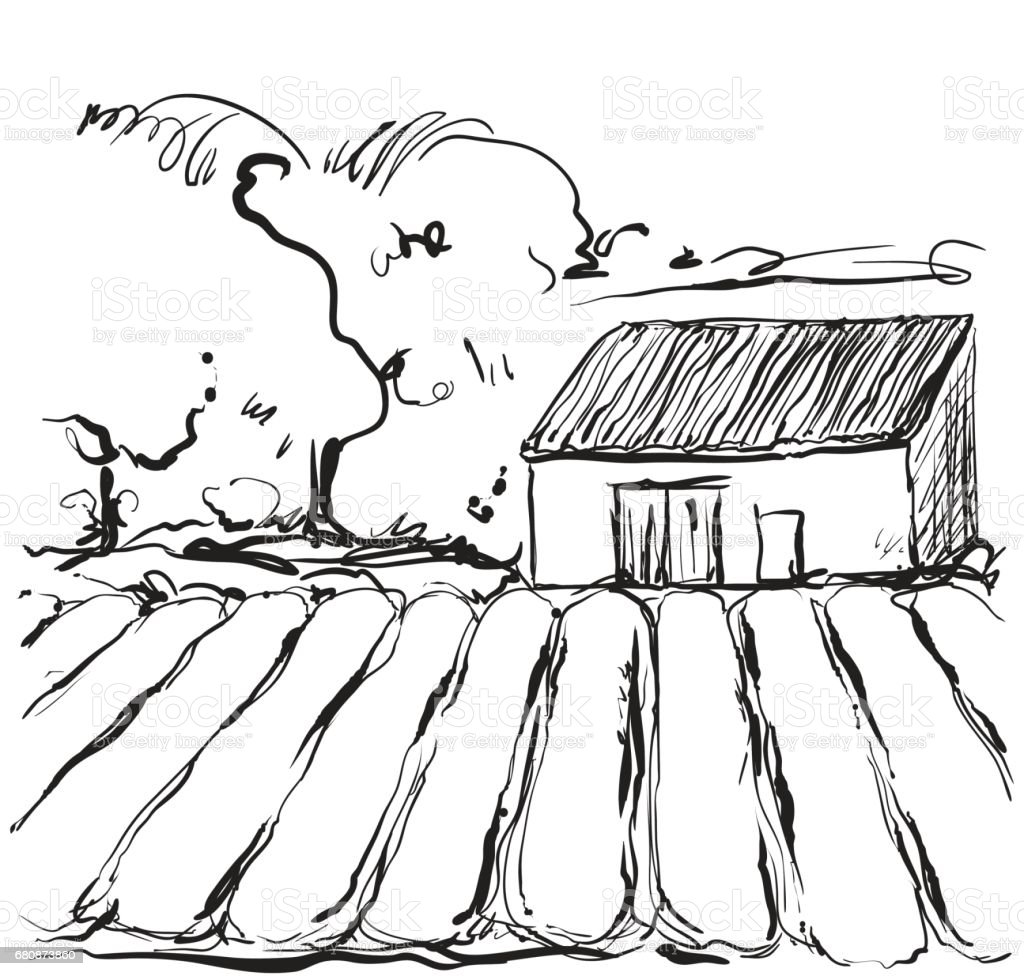 Hand drawn illustration of a fields and house royalty-free hand drawn illustration of a fields and house stock vector art & more images of agriculture