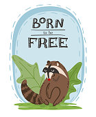 Hand drawn illustration of cute wild raccoon with inscription Born to be free. Post card, poster, or banner design