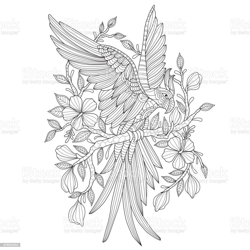 Hand dras illustration av papegoja och blomma i härva stil vektorkonstillustration