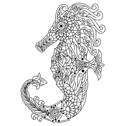 Hand drawn illustration of seahorse in style