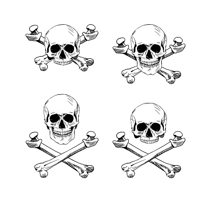 Hand drawn illustration skulls. Hand drawn set of skulls and bones. Vector art. Vector black and white tattoo skull illustration