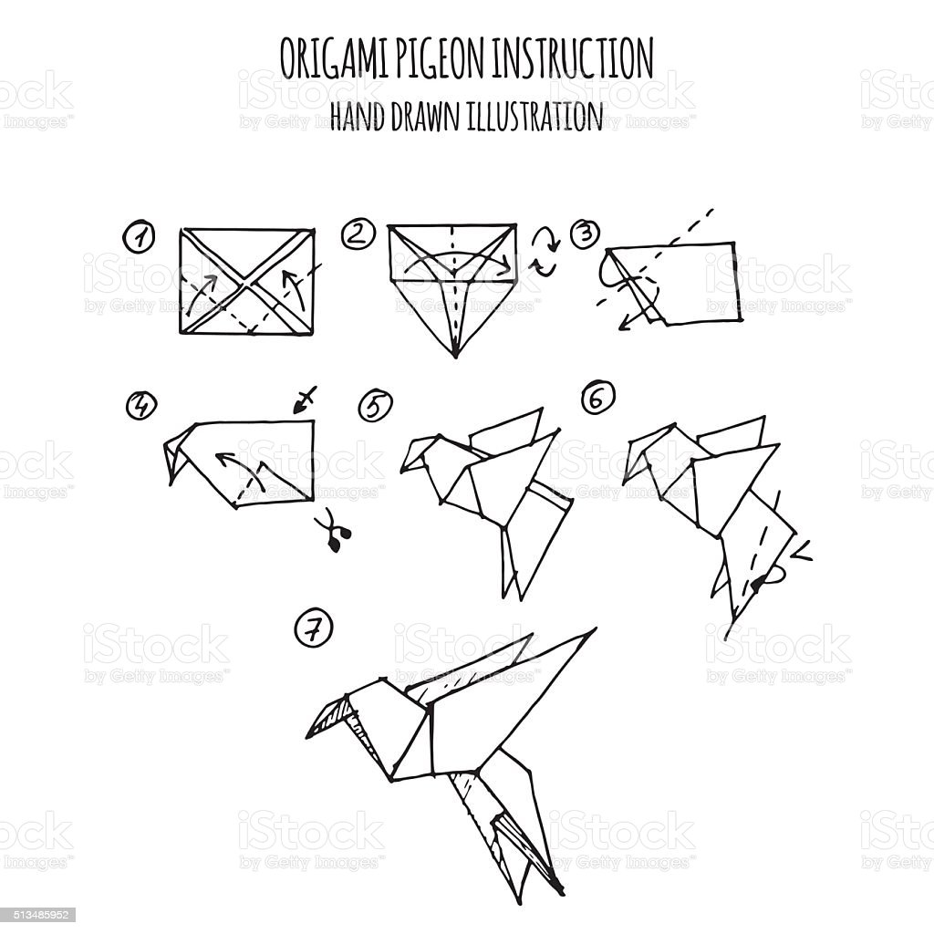 hand drawn illustration step by step of pigeon origami vector art illustration