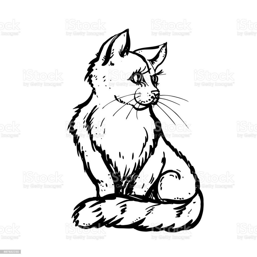 Mano Dibuja Gato Tinta Sobre Fondo Blanco Diseño Para Adultos Póster ...