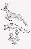Hand drawn jumping deer, fox, hare. Vintage animal graphic. Christmas greeting card.