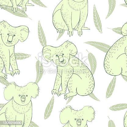 Hand drawn koala and eucalyptus leaves on white background. Vector  seamless pattern