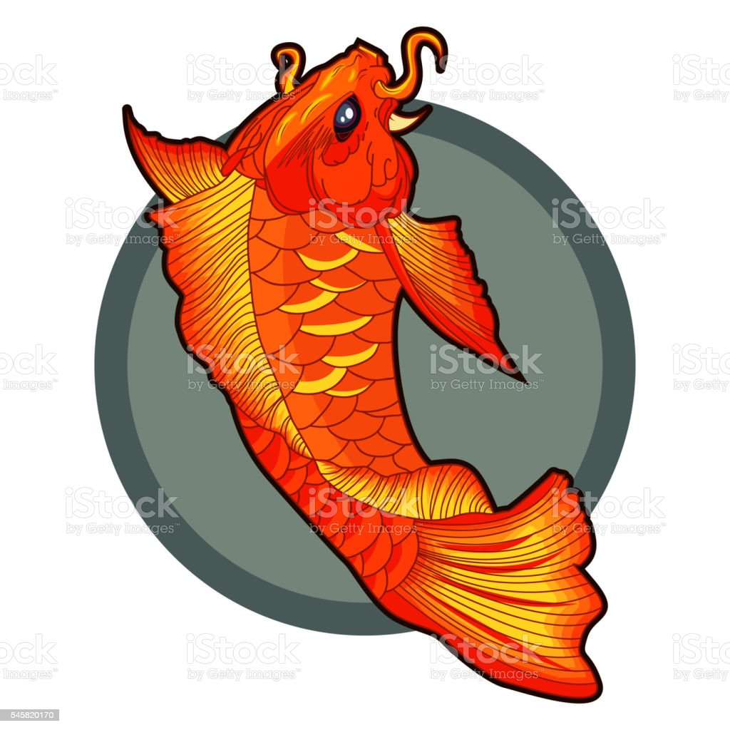 Hand Drawn Koi Fish Tattoo Beautiful Vector Illustration stock ...