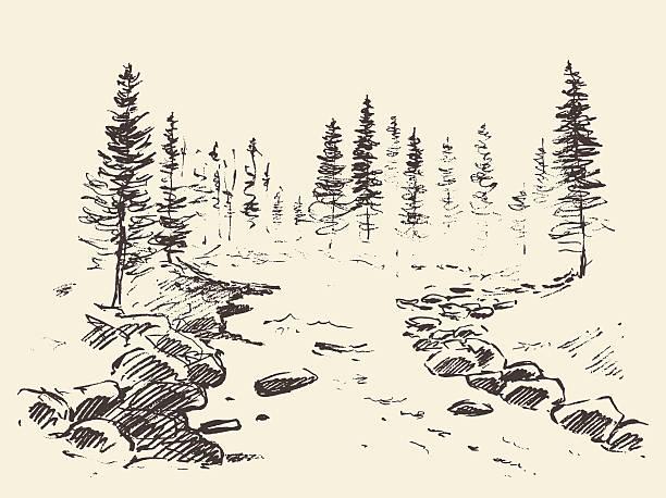 bildbanksillustrationer, clip art samt tecknat material och ikoner med hand drawn landscape river forest vintage vector. - forest