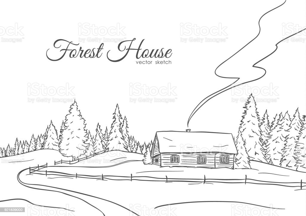 Hand Drawn Landscape With Road To House And Pine Forest Sketch Line Design Royalty