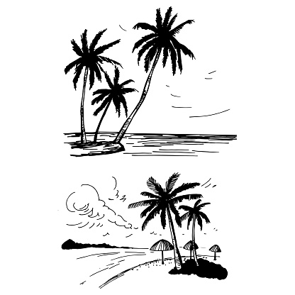 Hand drawn landscapes with palm trees.