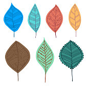 Vector illustration of a collection of hand drawn leaves