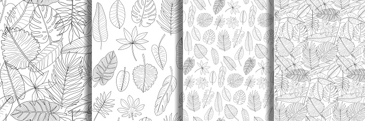 Hand drawn leaves of tropical plants seamless patterns set