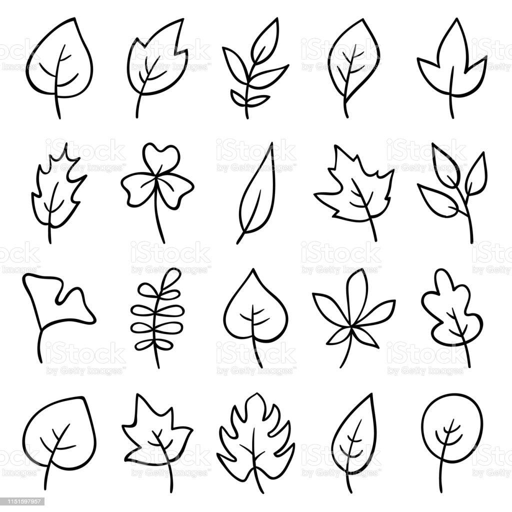Ilustración de Hojas Dibujadas A Mano y más Vectores Libres de ...