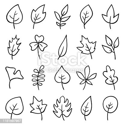 Set of hand drawn leaves. Doodle design elements.