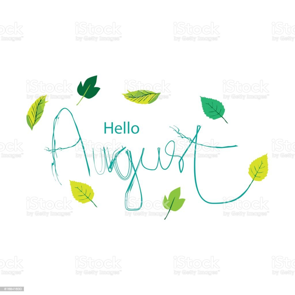 Hand drawn:  lettering  Hello  August vector art illustration