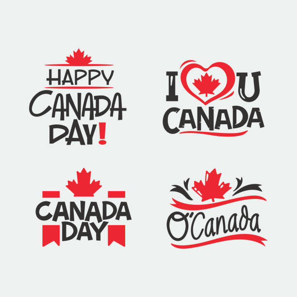 hand drawn lettering quote for canada day vector design - canada day stock illustrations