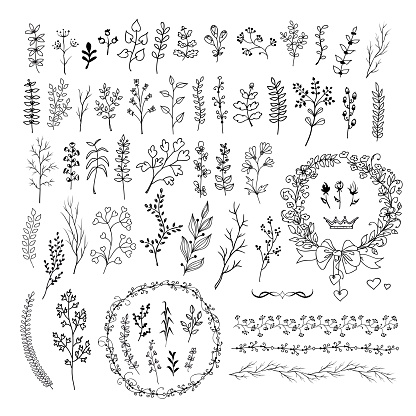 Hand drawn line floral and romantic design elements . Big set of isolated vector doodles