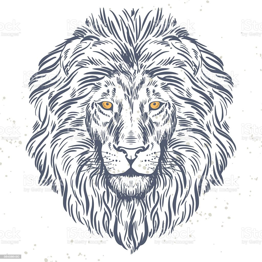 Tête de lion illustration dessiné à la main - Illustration vectorielle