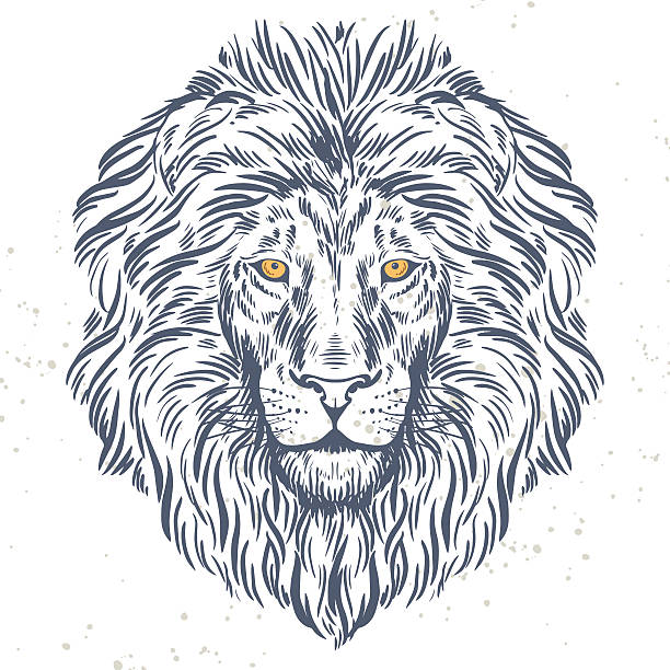 hand drawn lion head illustration - lion stock illustrations, clip art, cartoons, & icons