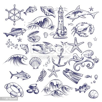 Hand drawn marine set. Sea ocean voyage lighthouse shark crab octopus starfish knot crab shell lifebuoy seagull anchor steering wheel collection