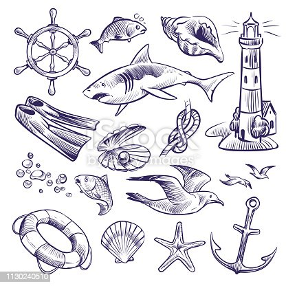Hand drawn marine set. Sea ocean voyage lighthouse shark knot shell lifebuoy seagull anchor steering wheel. Nautical sketch vector