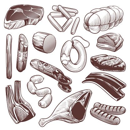 Hand drawn meat. Sketch meat products collection beef steak, pork fillet and veal bone, lamb and chicken, sausage and shank, vintage vector set