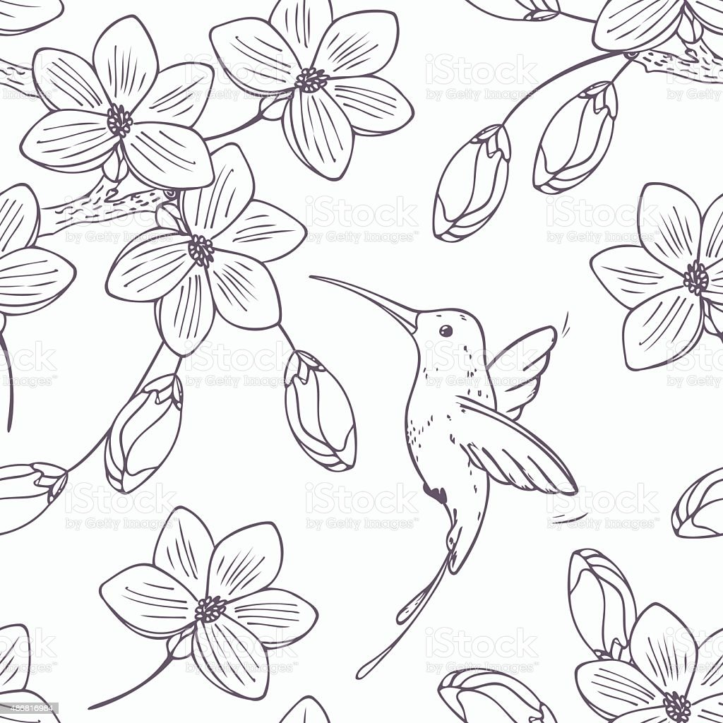 Hand drawn monochrome version of seamless pattern with humming bird vector art illustration