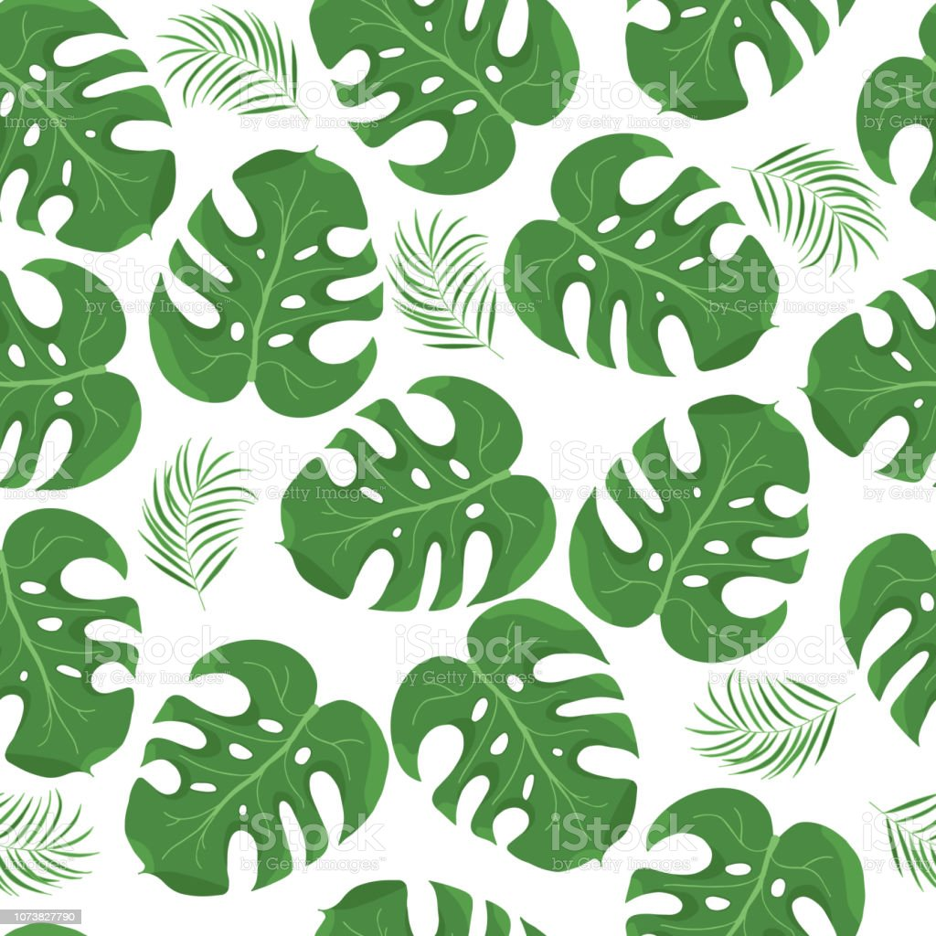 Hand Drawn Monstera Palm Leaves Pattern Tropical Leaf Wallpaper Background Vector Isolated Illustration Stock Illustration Download Image Now Istock Download premium illustration of hand drawn tropical leaves on a pastel. hand drawn monstera palm leaves pattern tropical leaf wallpaper background vector isolated illustration stock illustration download image now istock
