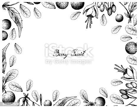 istock Hand Drawn of Bog Bilberries and Brinco de Princesa Frutis 946857520