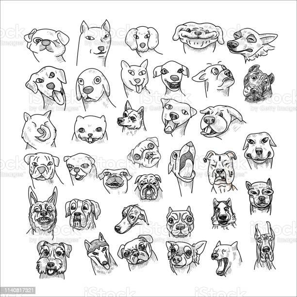 Hand drawn of dogs head set isolated on white background vector id1140817321?b=1&k=6&m=1140817321&s=612x612&h= 8ojoxwnkxmcbrgda4z1b3wcvowhvxbgqd5si atgnk=