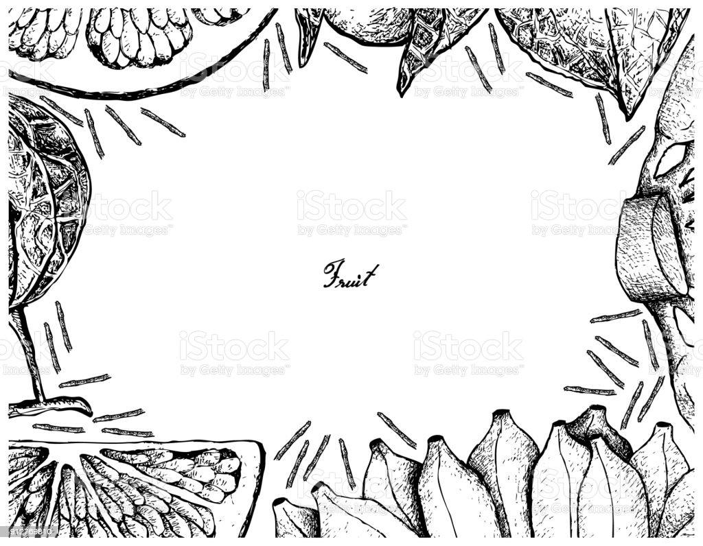 Mano alzada de marco de frutas frescas sobre fondo blanco - ilustración de arte vectorial