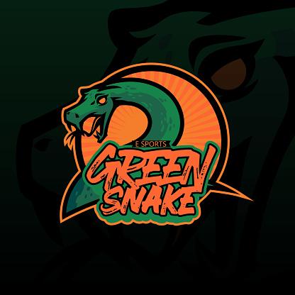 Hand drawn of green snake illustration for t-shirt, wallpaper, logo or tattoo. Green snake illustration isolated on dark background.
