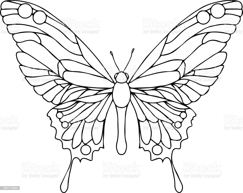 Hand Drawn Ornamental Butterfly Outline Illustration Royalty Free Stock