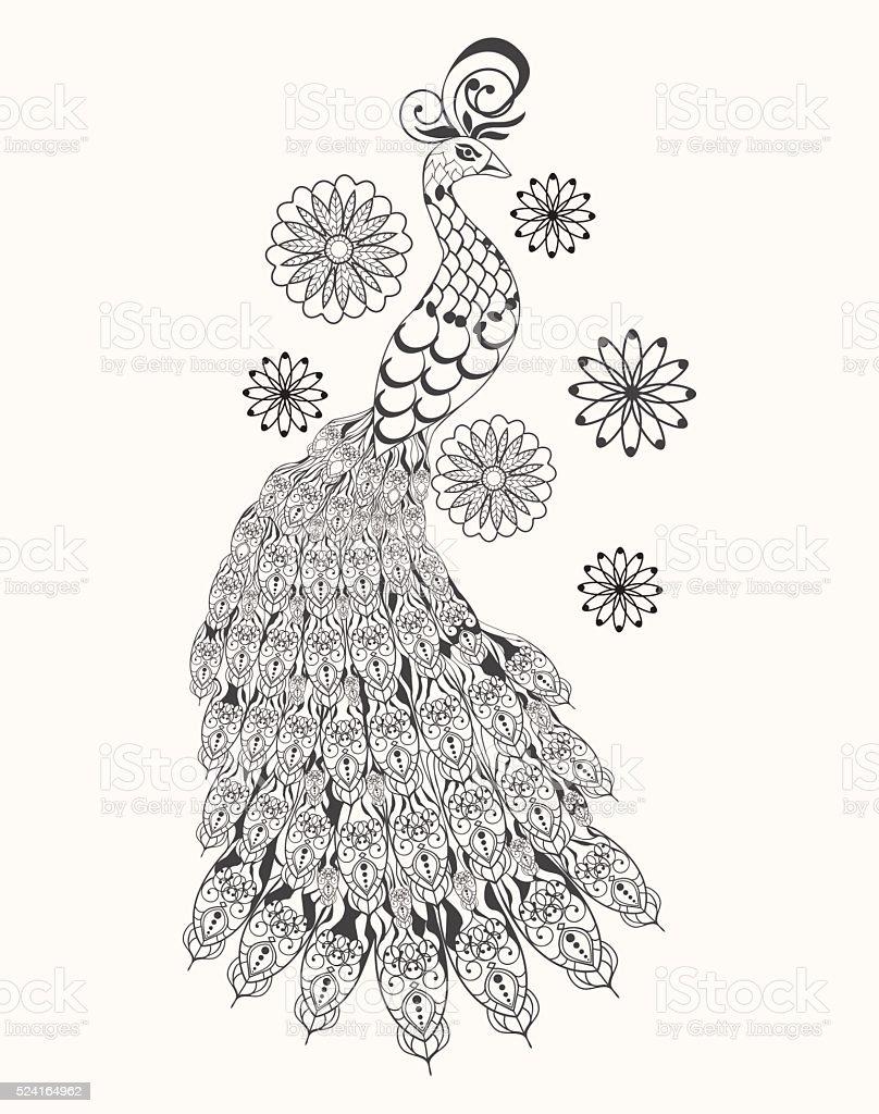 Ilustración De Dibujado A Mano Pavo Real Para Colorear Página Contra