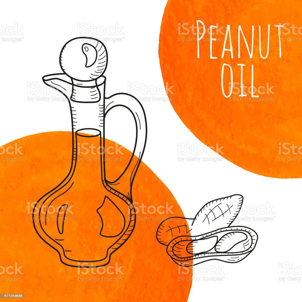 Hand drawn peanut oil bottle with orange watercolor spots vector art illustration