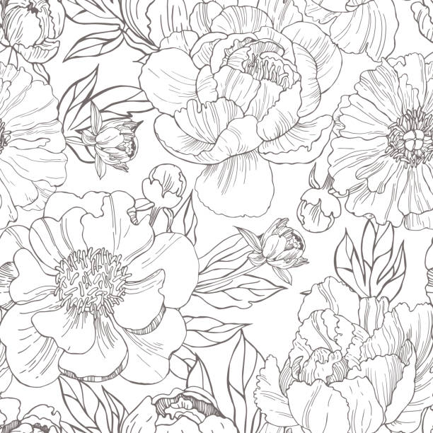 Hand drawn peonies. Vector  pattern. Hand drawn peonies. Vector seamless  pattern. floral and decorative background stock illustrations