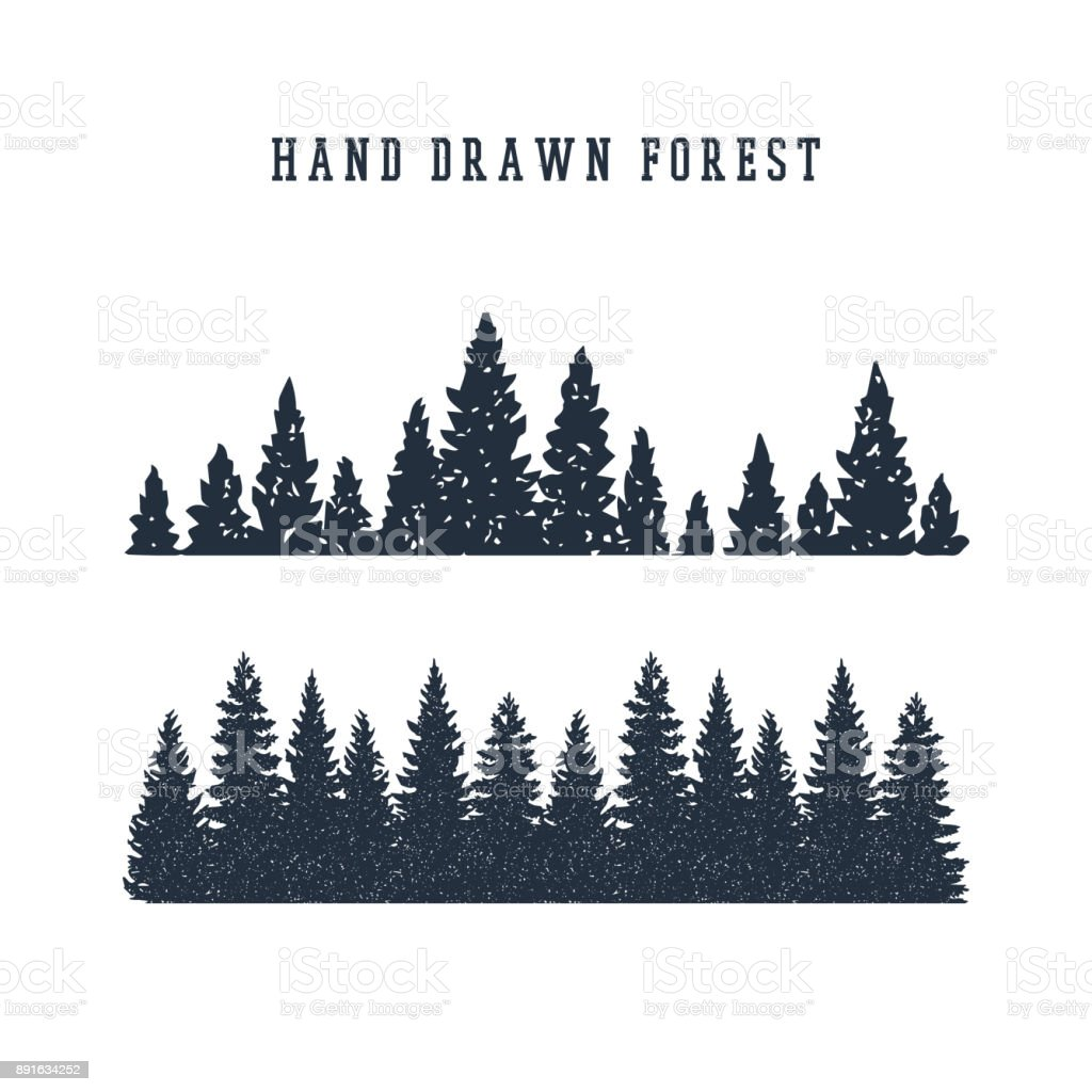 Hand Drawn Pine Forest Vector Illustration Stock ...