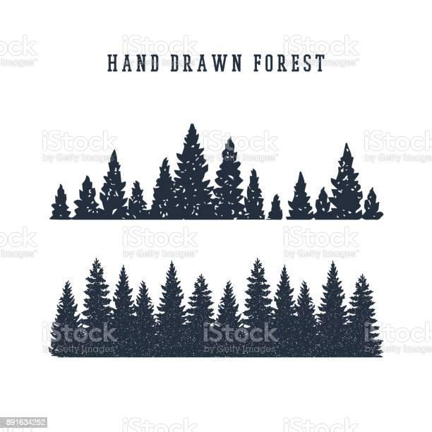 Hand drawn pine forest vector illustration vector id891634252?b=1&k=6&m=891634252&s=612x612&h=uq 4ufw62v7uiyeo4rbgo2cjzcrn0kdxqkxlzzhe3k4=