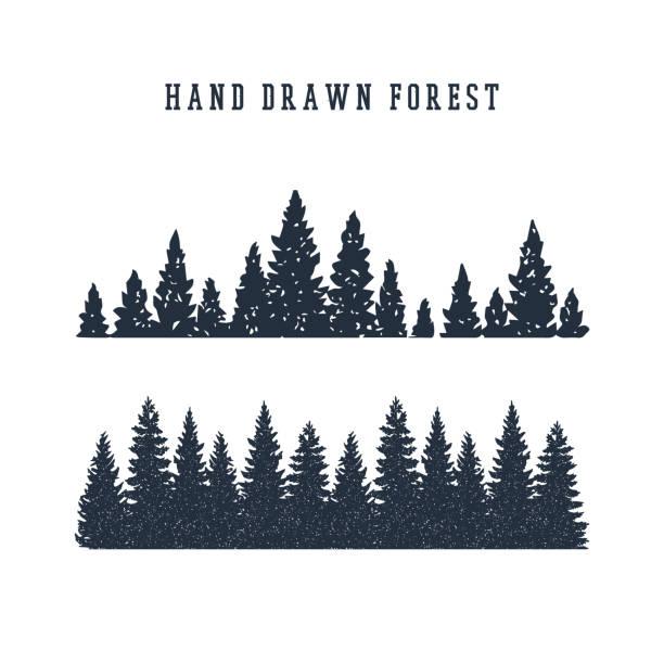 bildbanksillustrationer, clip art samt tecknat material och ikoner med hand dras pine skogen vektorillustration. - forest