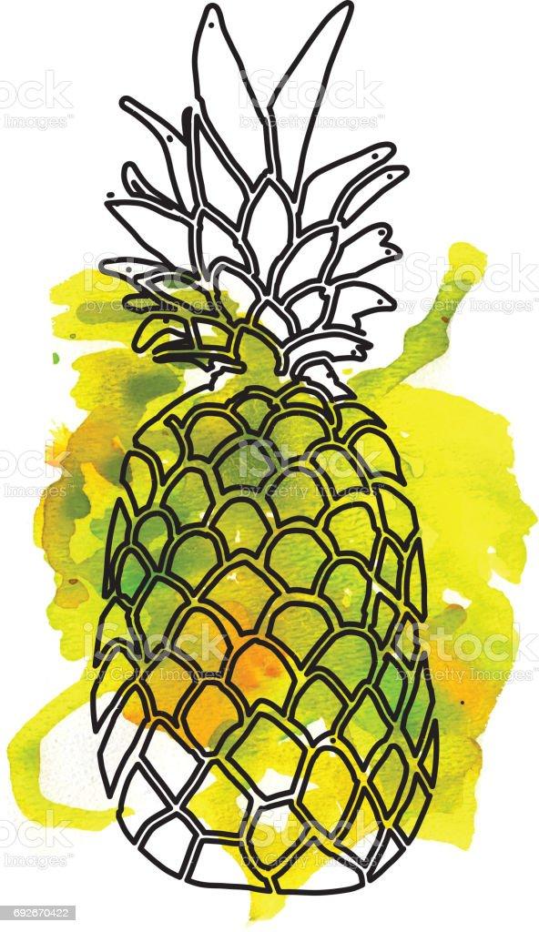 Hand drawn pineapple on watercolor blob vector art illustration